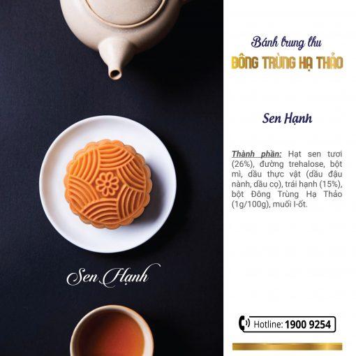 banh-trung-thu-dong-trung-ha-thao-ngan-dinh (8)